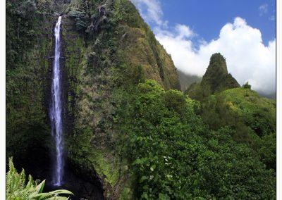 Vert Hawaï