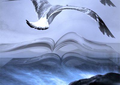 Les ailes du livre